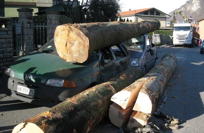 Le auto schiacciate dai tronchi d'albero sulla statale Lecco-Cisano