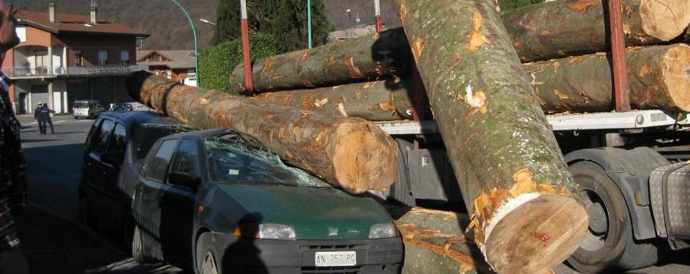 Due auto schiacciate dei tronchi Una tragedia sfiorata a Cisano