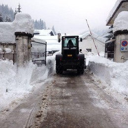 Il Veneto «travolto» dalla neve  Mezzi e uomini anche da Bergamo