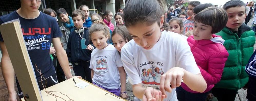 «Mostrare la bellezza del Vangelo»  Festa di Clackson, oltre 800 chierichetti