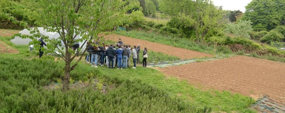 Scanzorosciate è «green» Con l'orto a scuola è primo in Italia