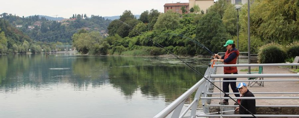 «Lenze pericolose» per chi passeggia Pesca vietata sul lungolago, è bufera