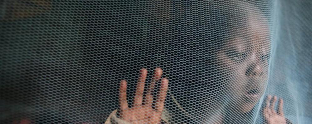 La battaglia del Cesvi contro la malaria Cliniche mobili in Birmania per batterla