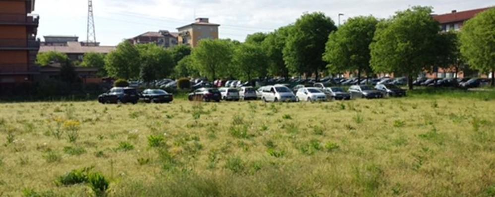 Nuovo ospedale, auto invadono i prati Al cimitero il parking va ai giostrai