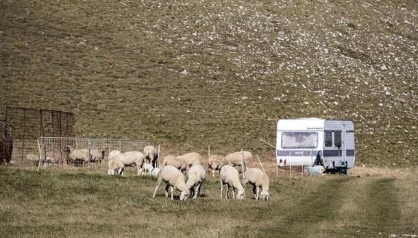 Più aiuti Ue per agricoltori terremotati