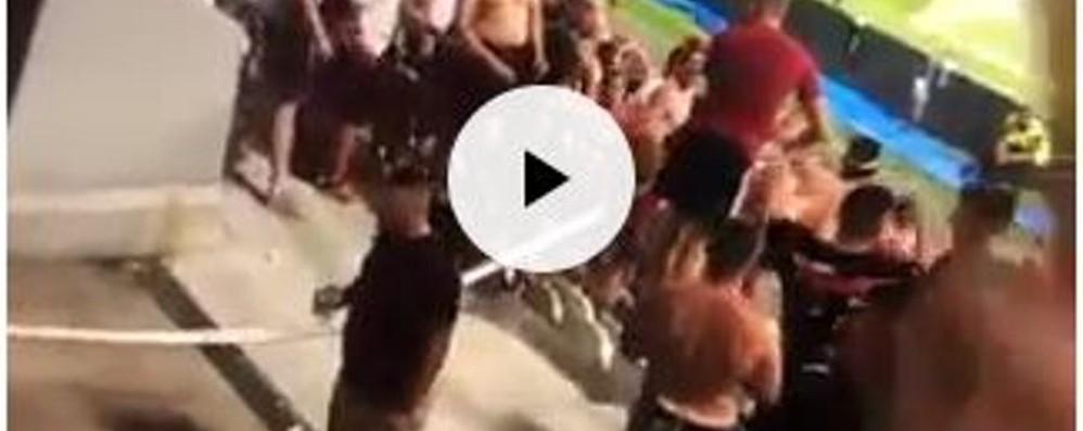 Atti di vandalismo a Reggio Emilia Il video che incastra i tifosi slavi