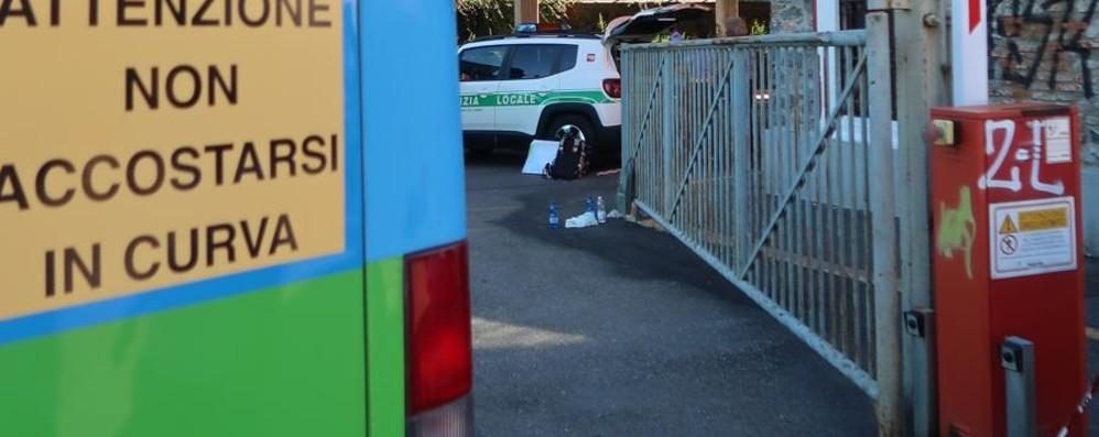 Nel video l'autista sale di corsa sul bus Gazzaniga, la fretta tra le possibili cause