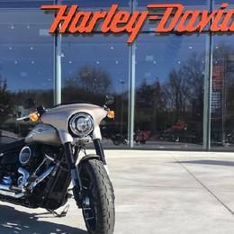 Harley Davidson, grande passione Crescono gli appassionati in Bergamasca