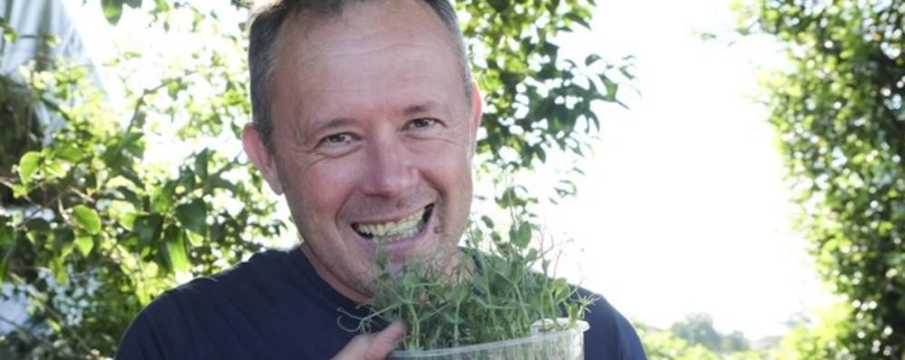 La coltivazione dei micro ortaggi A Gorlago, ricercati dai superchef