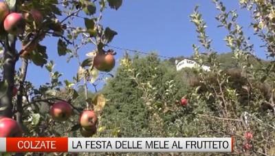 Colzate, la festa delle mele nel frutteto didattico