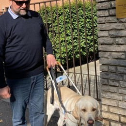 Giornata dei cani guida: l'aiuto a 4 zampe per chi vive nel buio
