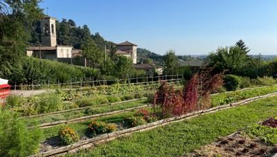 Mini vista guidata nella «Valle della Biodiversità» ad Astino