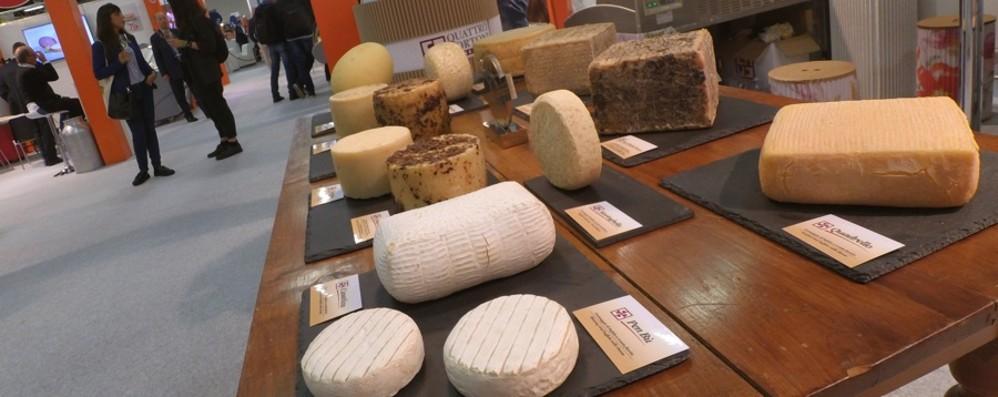 Dal 22 al 24 ottobre torna«Forme»: la manifestazione dedicata al formaggio