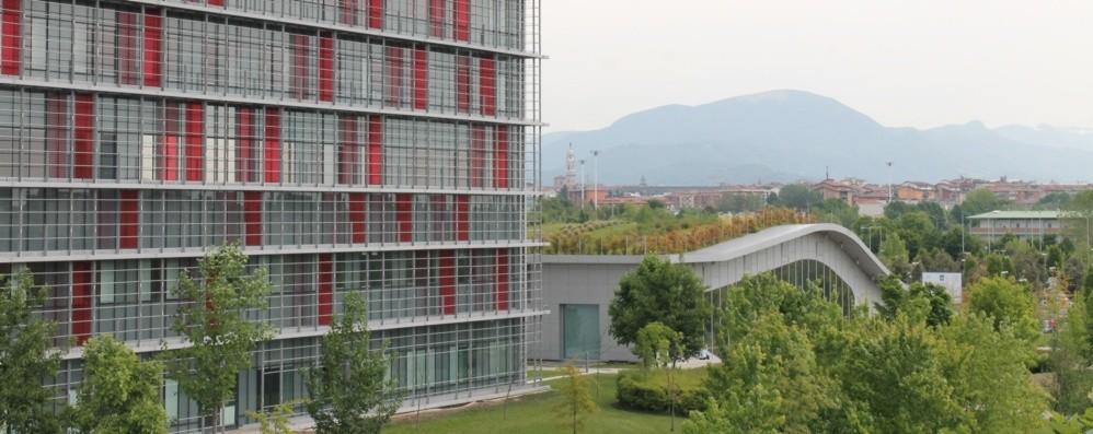 Scompenso cardiaco, a Bergamo i maggiori esperti italiani a confronto
